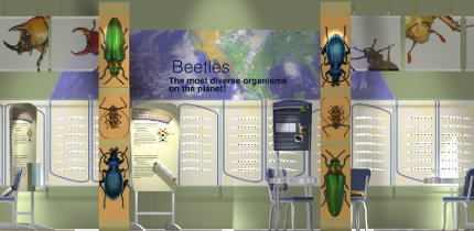 Beetles Exhibit Rendering